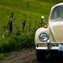 Volkswagen Coccinelle, la voiture la plus produite au monde